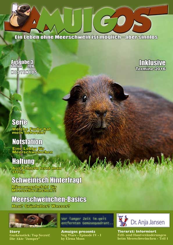 Newsbilder: amuigos3_vw_2016_cover.jpg